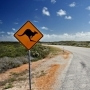 Australian-Outback-Road-Kangaroo-Sign