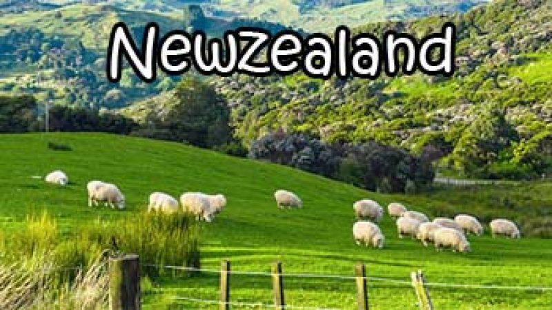 เรียนภาษา และทำงานที่ นิวซีแลนด์ดีไหม ?