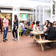 gallery60-studentsGroup