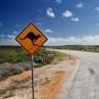 Australian-Outback-Road-Kangaroo-Sign