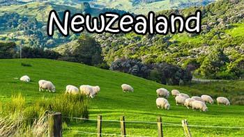 เรียนภาษาอังกฤษ และทำงานที่ ประเทศนิวซีแลนด์ดีไหม ?